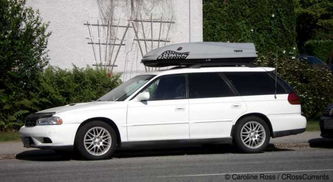 "Photo of car with ""shark-adorned"" Thule roof rack."